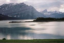 Горбатая гора
