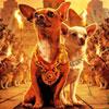 Крошка из Беверли-Хиллз: Собачки и их поклонники