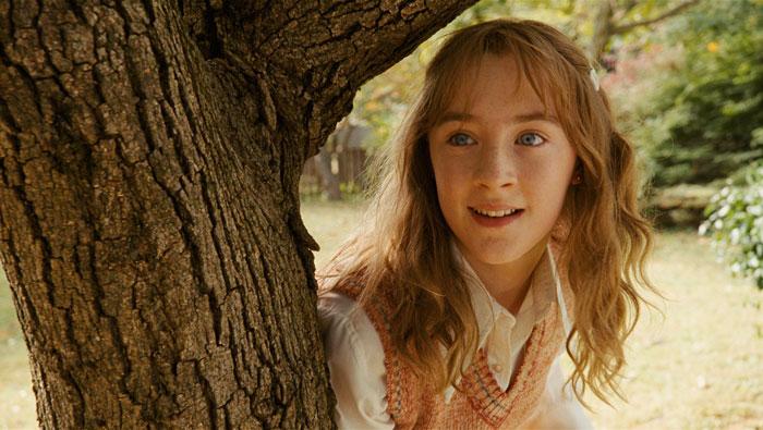 http://pics.kinokadr.ru/photoes/2009/12/21/lovelybones/43.jpg