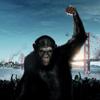 Восстание планеты обезьян: Итс нот э монкей