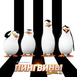 Пингвины Мадагаскара: Ценный участник команды